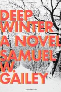 Deep Winter novel