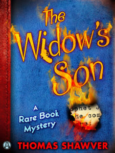 The Widow's Son mystery novel